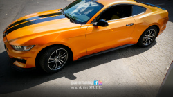 Mustang Oracal 970-300 Mandarin Glossy Special Effect Cast