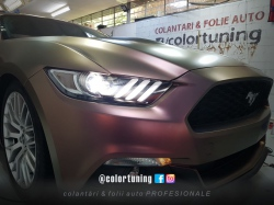 Colantare cameleon Mustang