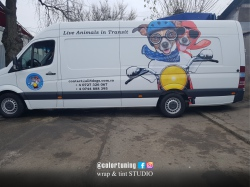 inscriptionare policromie mercedes sprinter